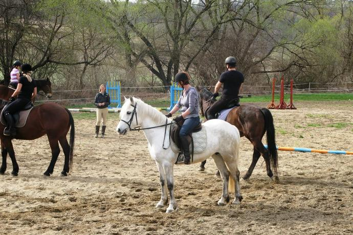 Horse Riding lessons in Romania