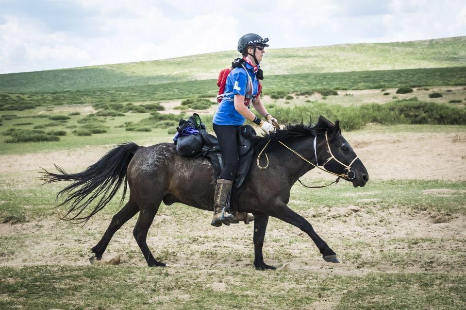 mongolia mongol derby mongolian horses featured