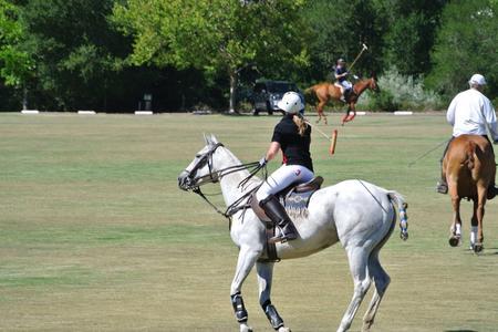 Polo in California