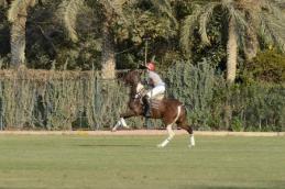 Polo in Cairo