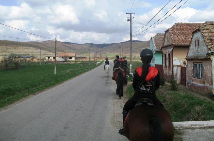 romania horse riding.jpg