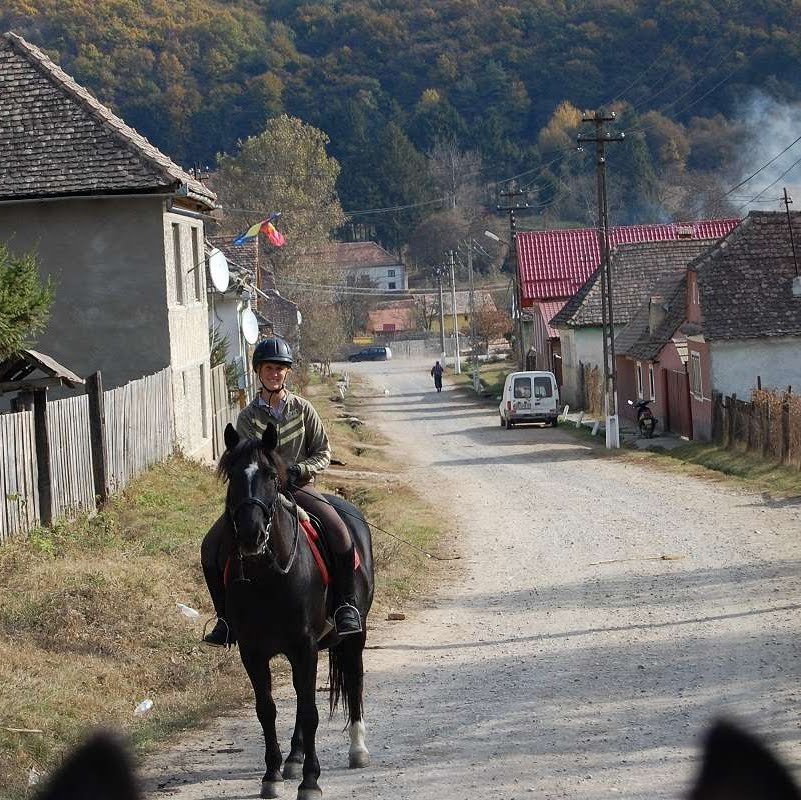 Riding horses and working in Romania